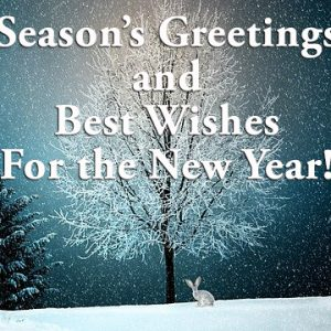 Season's Greetings from SoulGuidedCoach.com