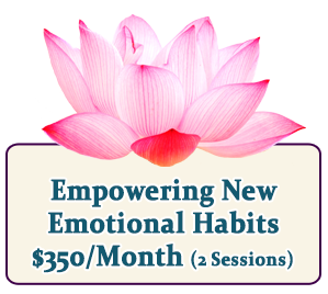Empowering New Emotional Habits Coaching Program